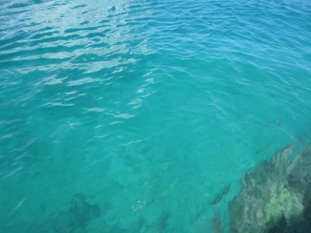 海.jpg